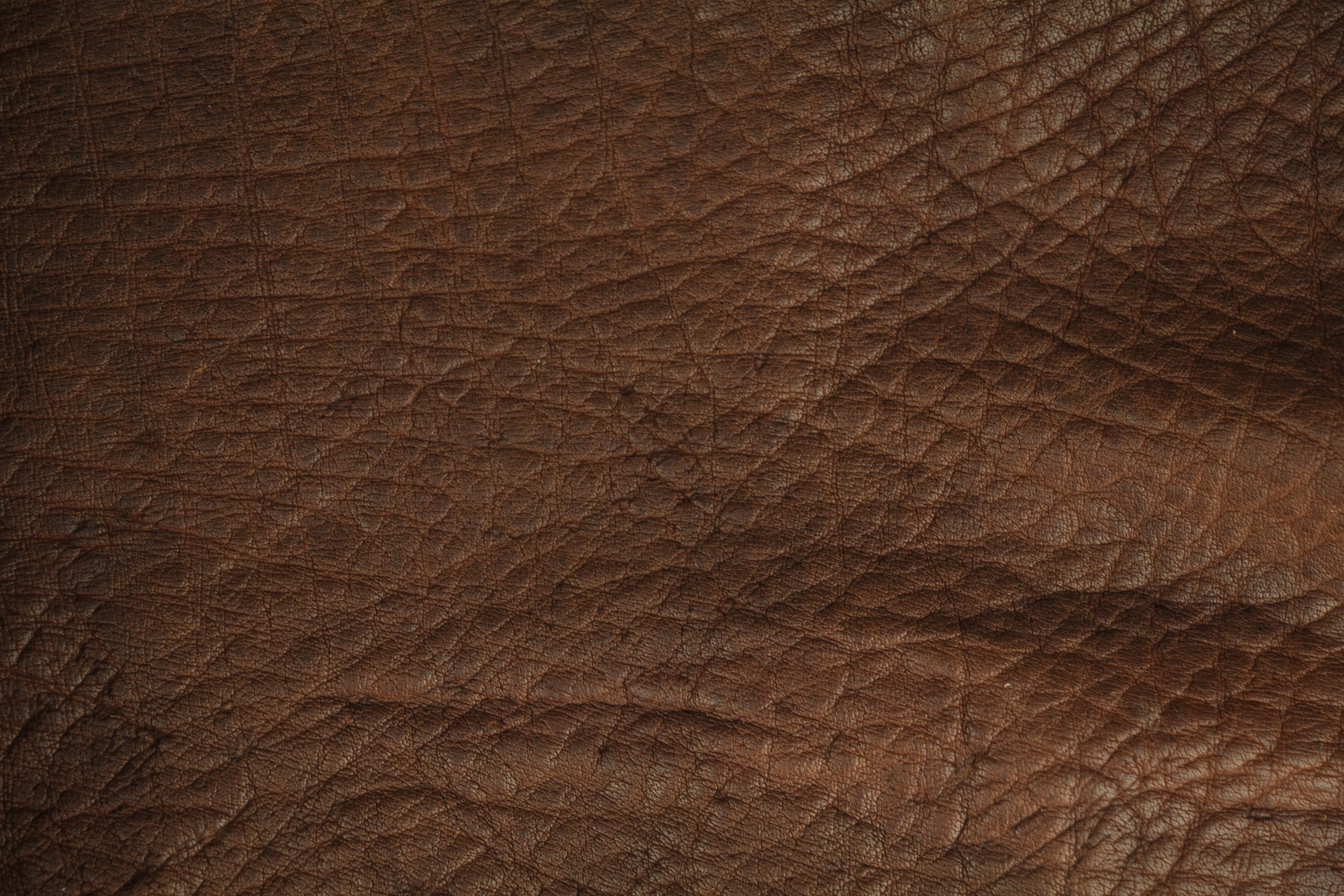 Leather Textures Texture X